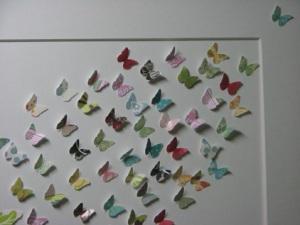 close_up_small_butterflies