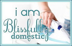 i-am-blissfully-domestic-iron1
